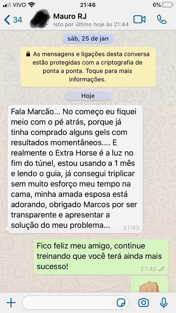 Extra Horse