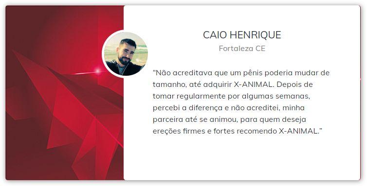 X Animal